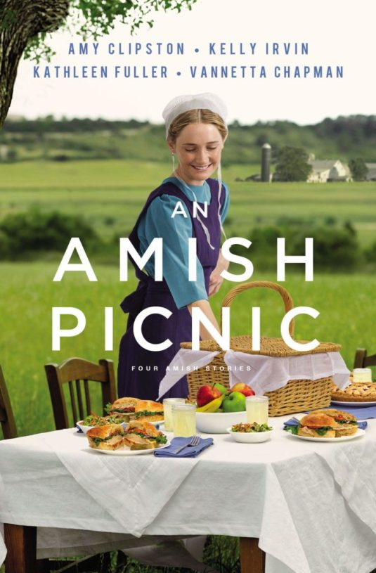 978-0310357889_an-amish-picnic-672x1024