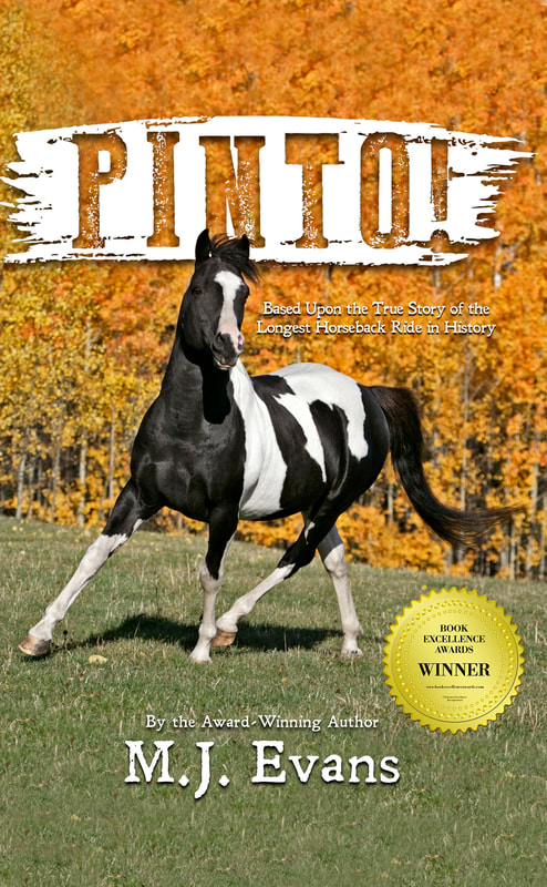 pinto-front-cover-with-bea-award-1_orig