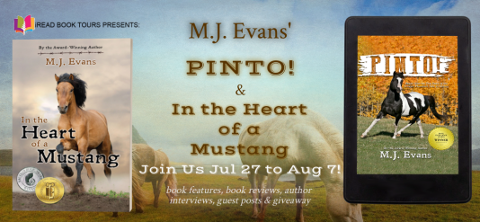 PINTO MUSTANG TOUR BANNER